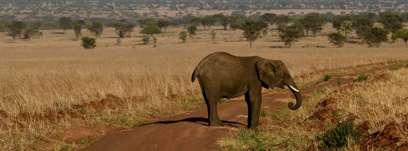 Kidepo National Park